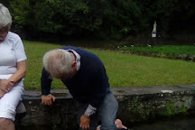 St. Patrick's Well, Clonmel, Ireland