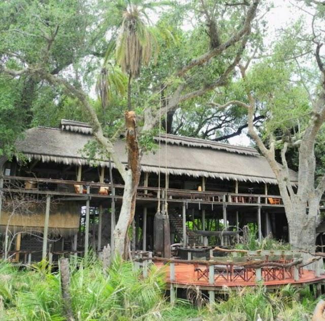 Jao camp (Wilderness-Safaris)