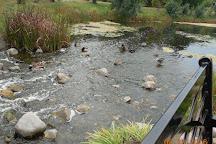 Lake Katherine Nature Center, Palos Heights, United States