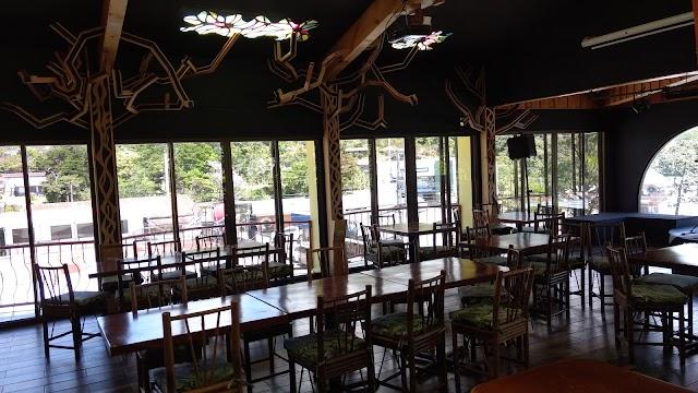 Tree House Restaurante & Cafe