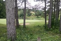 Mistwood Golf Course, Lake Ann, United States