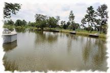 Time Out Fishing Park, Phai San, Thailand