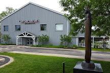 Trickster Art Gallery, Schaumburg, United States