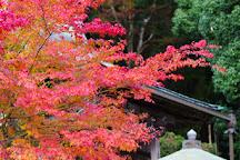 Enju-in, Nabari, Japan