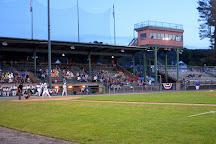 Muzzy Field, Bristol, United States