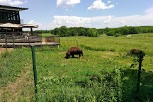 Wildlife Prairie Park, Hanna City, United States