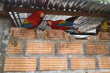 Zoorefugio Tarqui, Puyo, Ecuador