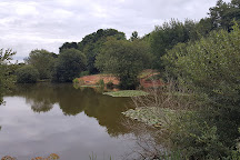 Luccombes Coarse Fishery, Exminster, United Kingdom