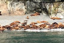 Lu Lu Belle Glacier Wildlife Cruises, Valdez, United States