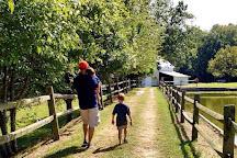 Vollmer Farm, Bunn, United States
