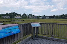 Bethany Beach Nature Center, Bethany Beach, United States