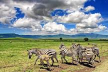 Mikumi National Park, Mikumi National Park, Tanzania