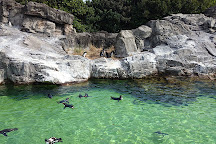 Tokyo Sea Life Park, Edogawa, Japan