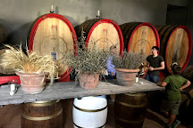 Fattoria di Montemaggio, Radda in Chianti, Italy