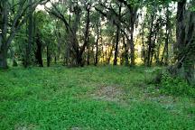 Elinor Klapp-Phipps Park, Tallahassee, United States