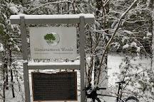 Hassanamesit Woods, Grafton, United States