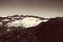 Pico Ruivo do Paul da Serra, Madeira, Portugal