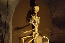 Museo de Esqueletologia, Cuenca, Ecuador