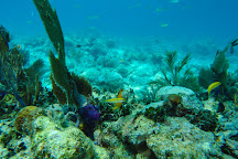 Captain Rio's Charters Key West, Key West, United States