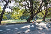Centennial Park Cycles, Sydney, Australia