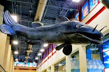 The Children's Museum of Memphis, Memphis, United States