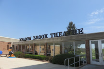 Meadow Brook Theatre, Rochester, United States