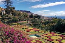 Botanická zahrada Madeira, Funchal, Portugal