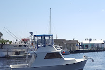 Reel Deal Sportfishing, Clearwater, United States
