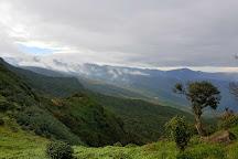 Chariot Path, Kandy, Sri Lanka