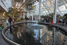Devonian Gardens, Calgary, Canada