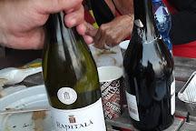 Tenuta Rapitala Winery, Camporeale, Italy