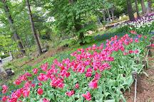 Maruyama Park, Sapporo, Japan