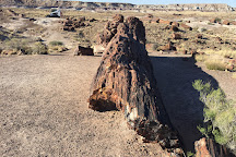 Rainbow Forest Museum, Petrified Forest National Park, United States