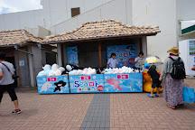 Kamogawa SeaWorld, Kamogawa, Japan