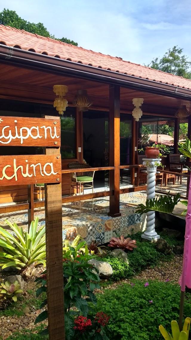 Aratinga Inn