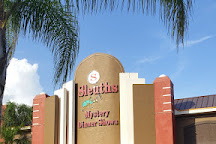 Sleuths Mystery Dinner Shows, Orlando, United States
