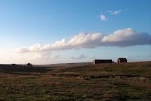 Elephant Beach Farm, East Falkland, Falkland Islands