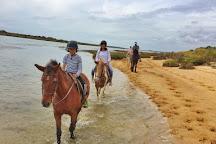 Tavira Equestrian Tourism, Tavira, Portugal