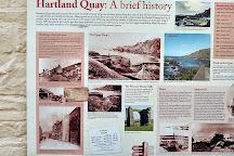 Hartland Quay, Hartland, United Kingdom