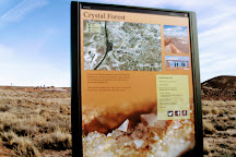 Crystal Forest Loop, Petrified Forest National Park, United States