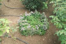 Giardino della Rosa, Ronzone, Italy