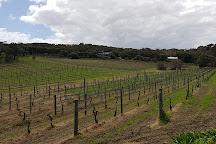 Cape Naturaliste Vineyard, Yallingup, Australia