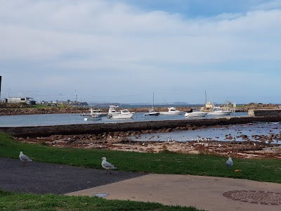 Shellharbour reef and parking
