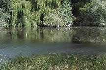 Cudmore Grove Country Park, Mersea Island, United Kingdom