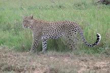 Tanzania Escapade, Moshi, Tanzania