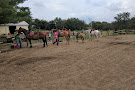 Dromoland Orchard & Stables
