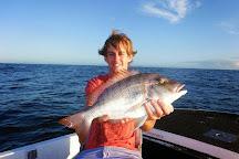 Noosa River Fishing Safaris, Noosaville, Australia