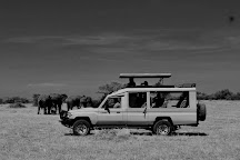 Lights on Africa Destinations & Safaris, Arusha, Tanzania