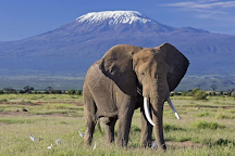 Mount Kilimanjaro, Kilimanjaro National Park, Tanzania
