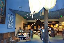 Camarillo Public Library, Camarillo, United States